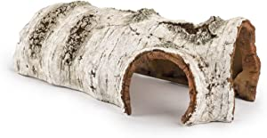 Niteangel Birch Bark Bends Habitat Decor Reptile Hideout