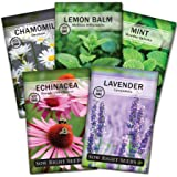 Sow Right Seeds - Herbal Tea Collection - Lemon Balm, Chamomile, Mint, Lavender, Echinacea Herb Seed for Planting; Non-GMO He