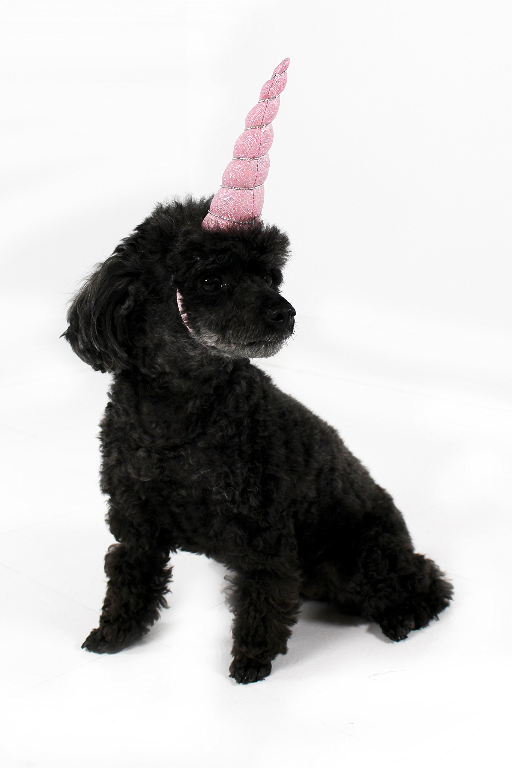 Mirage Pet Products Unicorn Horn for Small to Medium Pets 4