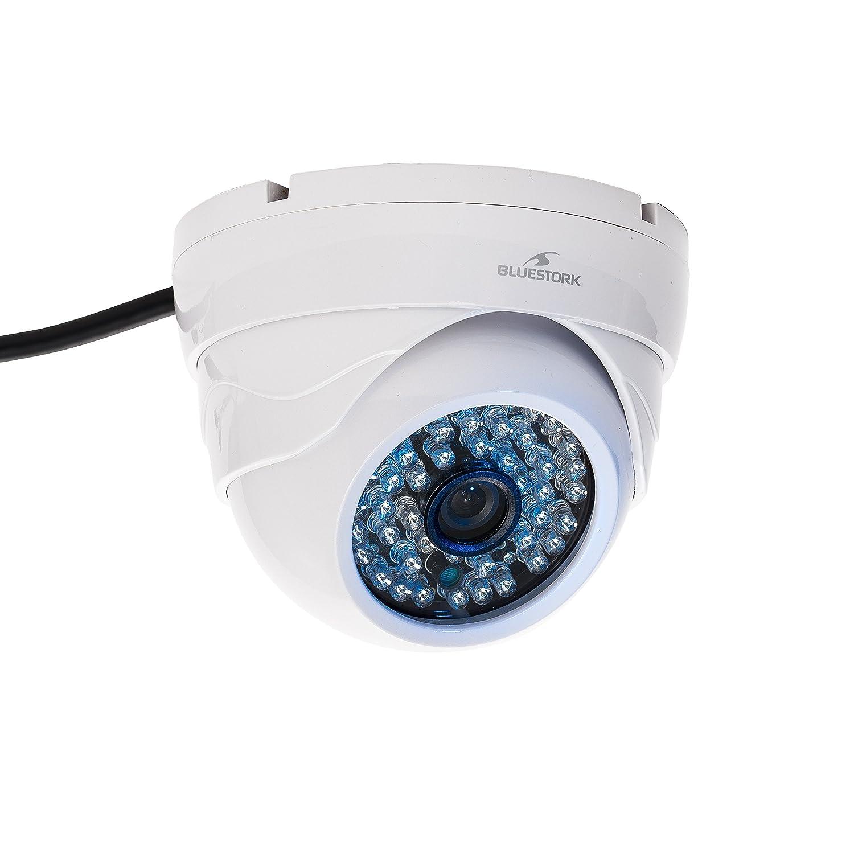 Bluestork BS-CAM/DO/HD - Cámara de vigilancia (IP, Dome, Inalámbrico, Interior, Color blanco, Pared, Fija): Bluestork: Amazon.es: Informática