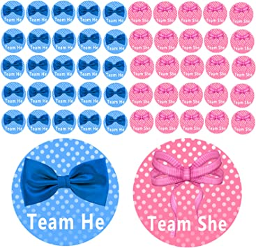 Team Girl and Team Boy 25 Pink + 25 Blue Shiny Pink /& Blue Voting Sticker Set Gender Reveal Stickers