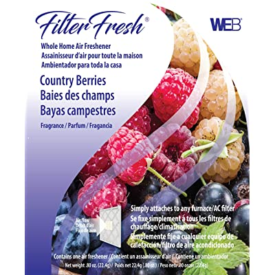 WEB FilterFresh Whole Home Country Berry Air Freshener: Home Improvement