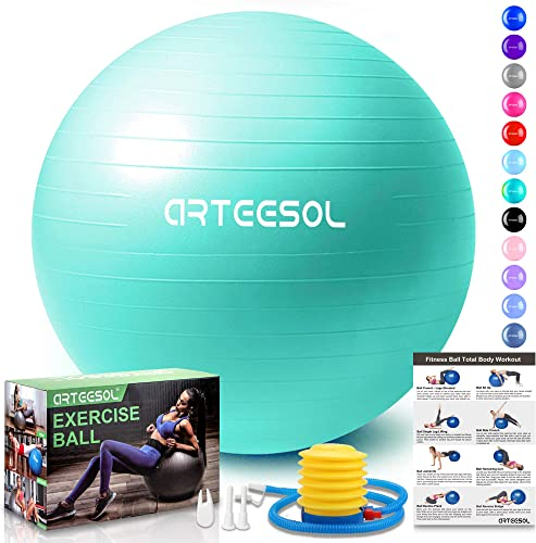arteesol Exercise Ball 45cm 55cm 65cm 75cm 85cm Yoga Ball