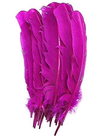 77c42237c3db05 ERGEOB 20 stück Truthahnfedern basteln Federn Bogen Federn 20-30cm (09 Rosa)