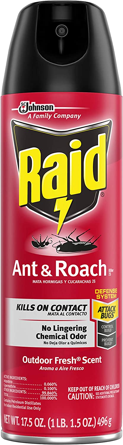 Raid Ant & Roach Killer Spray for Listed Bugs, Insect, Spider, For Indoor Use, Fresh Scent, 17.5 Oz, Pack of 1