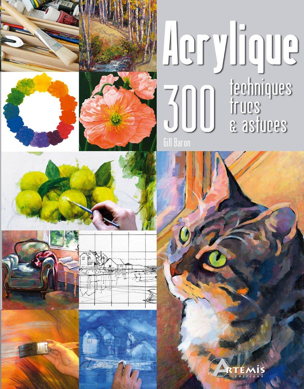 Amazon Fr Acrylique 300 Techniques Trucs Et Astuces Gill