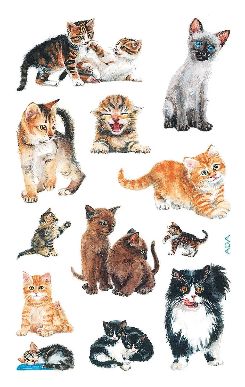 Avery 53574 pegatinas para los niños, gatito, material de papel, 3 hojas, 36 Etiqueta