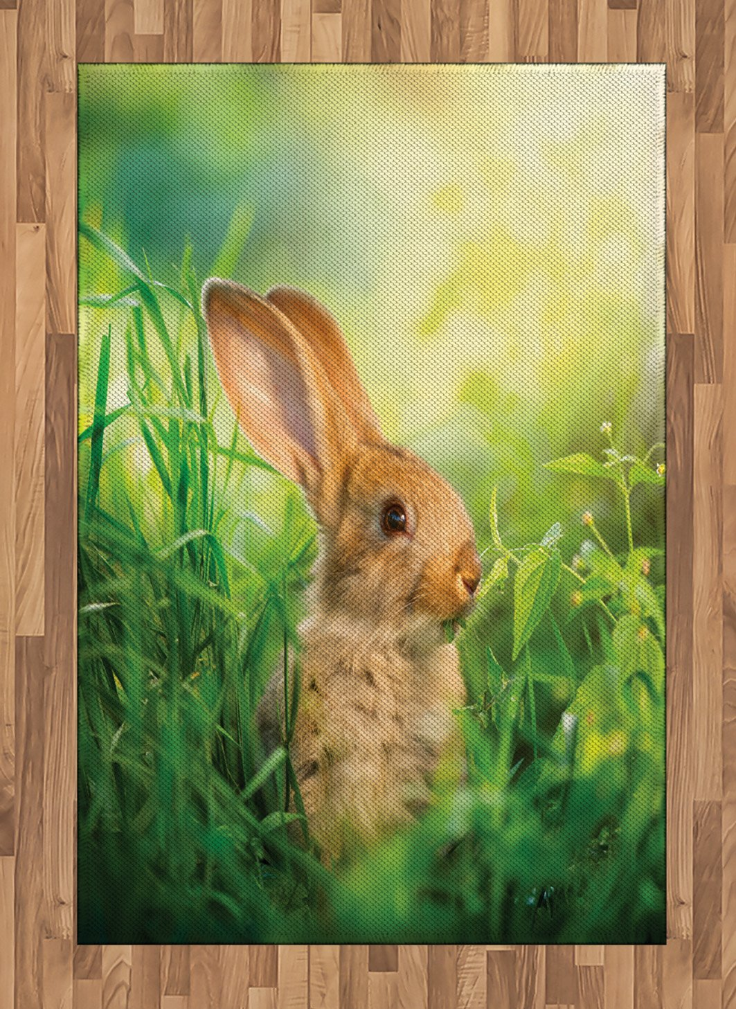 Amazon com: Lunarable Rabbit Area Rug, Rabbit in a Meadow Among
