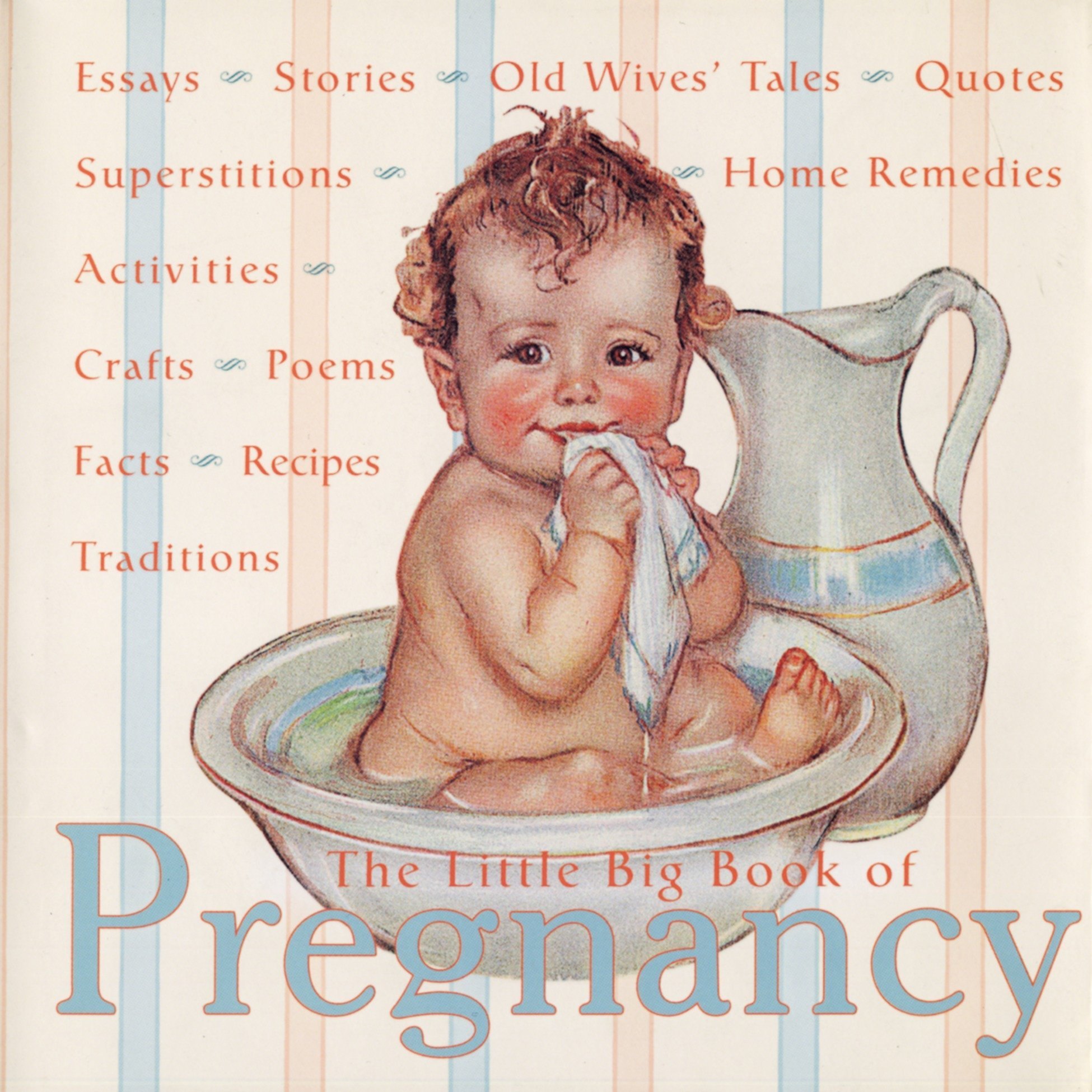 The Little Big Book of Pregnancy (Little Big Books (Welcome)) by Welcome Books
