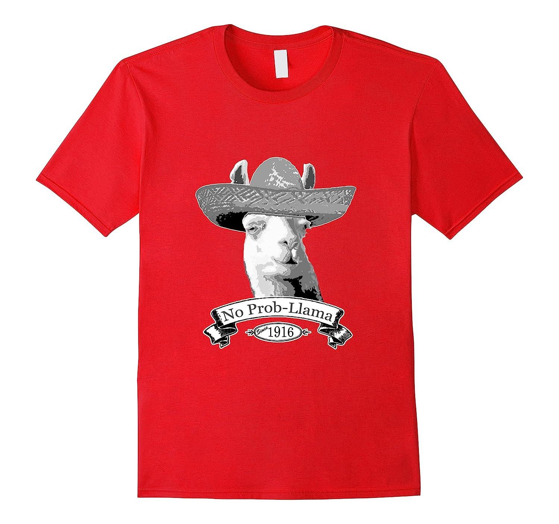 100th Birthday Gift T Shirt 1916 Age 100 Llama Hipster Shi BN Banazatee