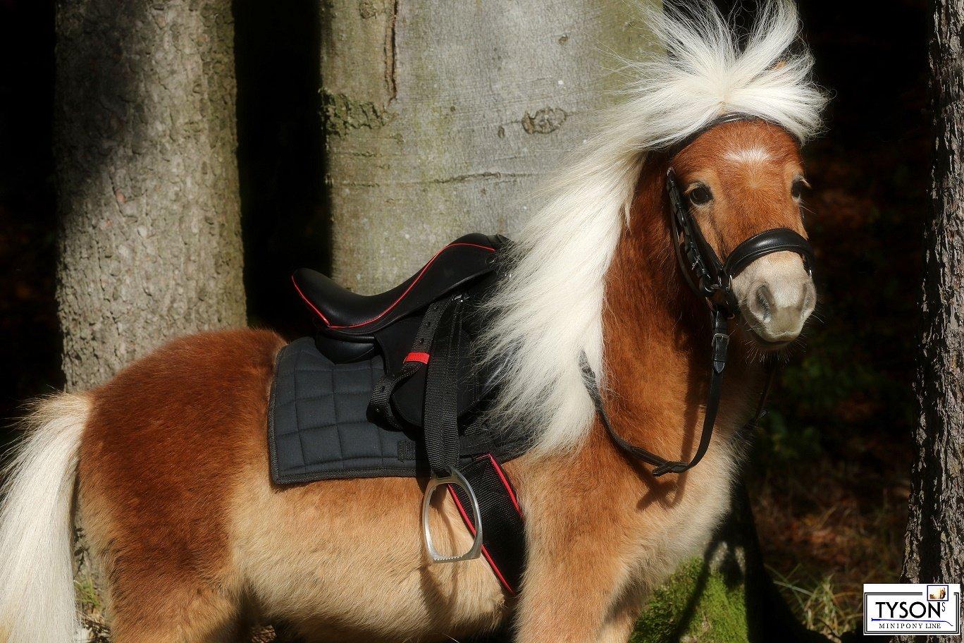 Ledersattel Glitzer Mini Shetty Minishetty Mini Pony Falabella Dressur 8 10 oder 12 Zoll Tysons Breehes