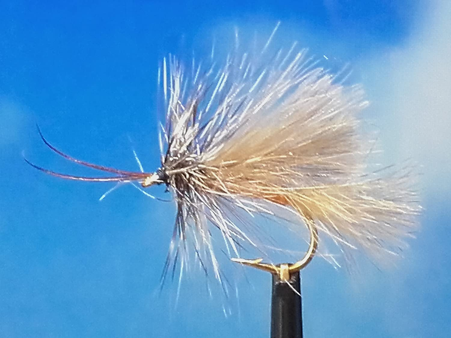 Trockenfliegen 'High Rider Sedge Brown' CDC, 3er Set, Hakengrö ß e 14