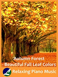 Autumn Forest – Beautiful Fall Leaf Colors – Relaxing Piano Music