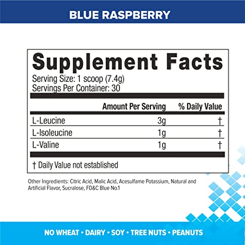 Bodybuilding Signature BCAA Powder Essential Amino Acids Nutrition Supplement Promote Muscle Growth and Recovery 30 Servings, Blue Raspberry