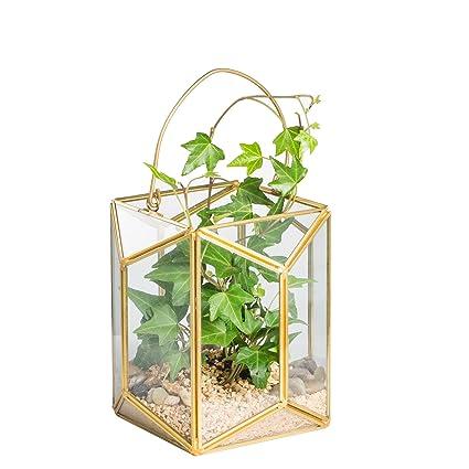 Amazon Com Ncyp Geometric Glass Terrarium Lantern Tabletop