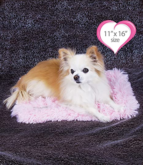 "Peluche Powder Puff Shag Dog/Pet Blanket (13"" x 17"" Carrier Blanket"