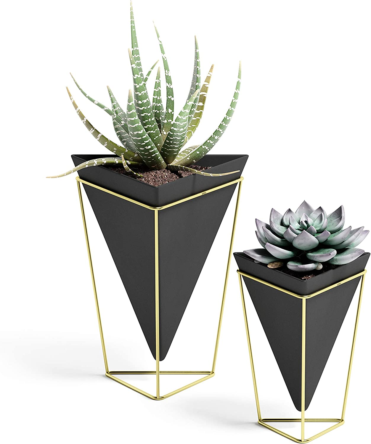 Umbra Trigg Desktop Planter Vase & Geometric Container-for Succulent, Air, Mini Cactus, Faux Plants and More, Desk, Black/Brass