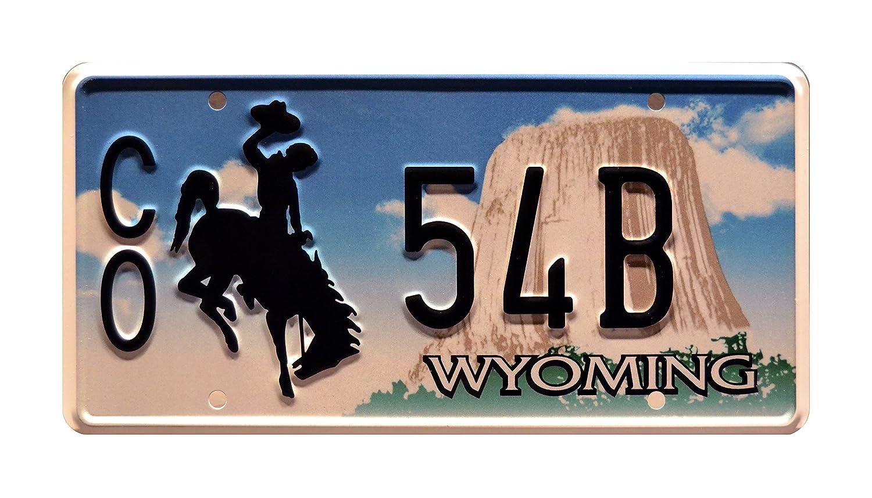 Metal Stamped Vanity Prop License Plate CO 54B Walt/'s Ford Bronco Celebrity Machines Longmire
