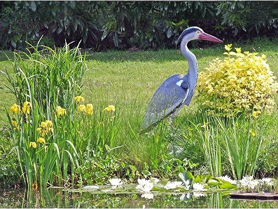 Figura de garza para decorar estanques/espantar pájaros: Amazon.es: Jardín