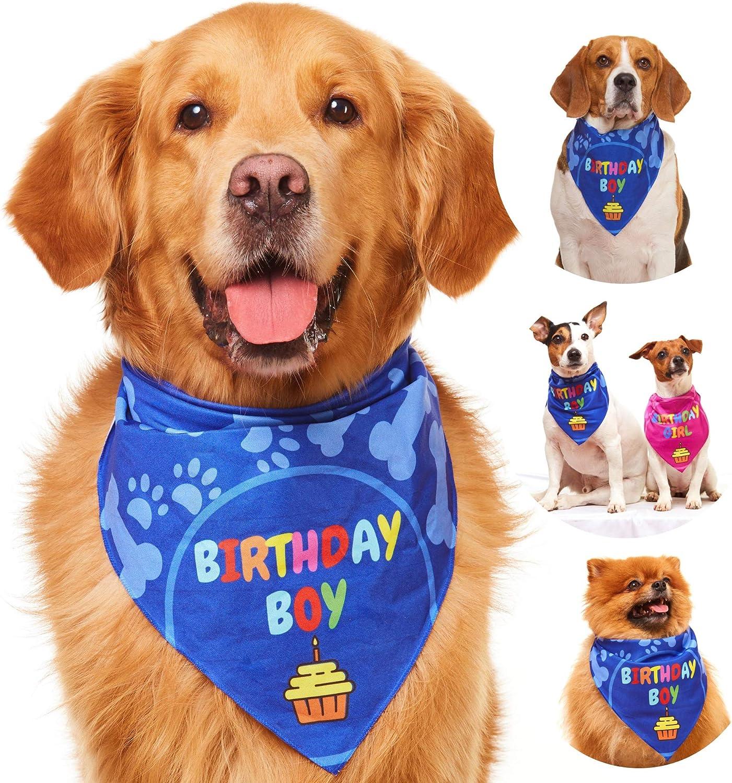 Party Stars Birthday Pup Dog Bandana Pet Bandana Rainbow Over the Collar Balloons Celebration Cat Bandana| Dog Scarf