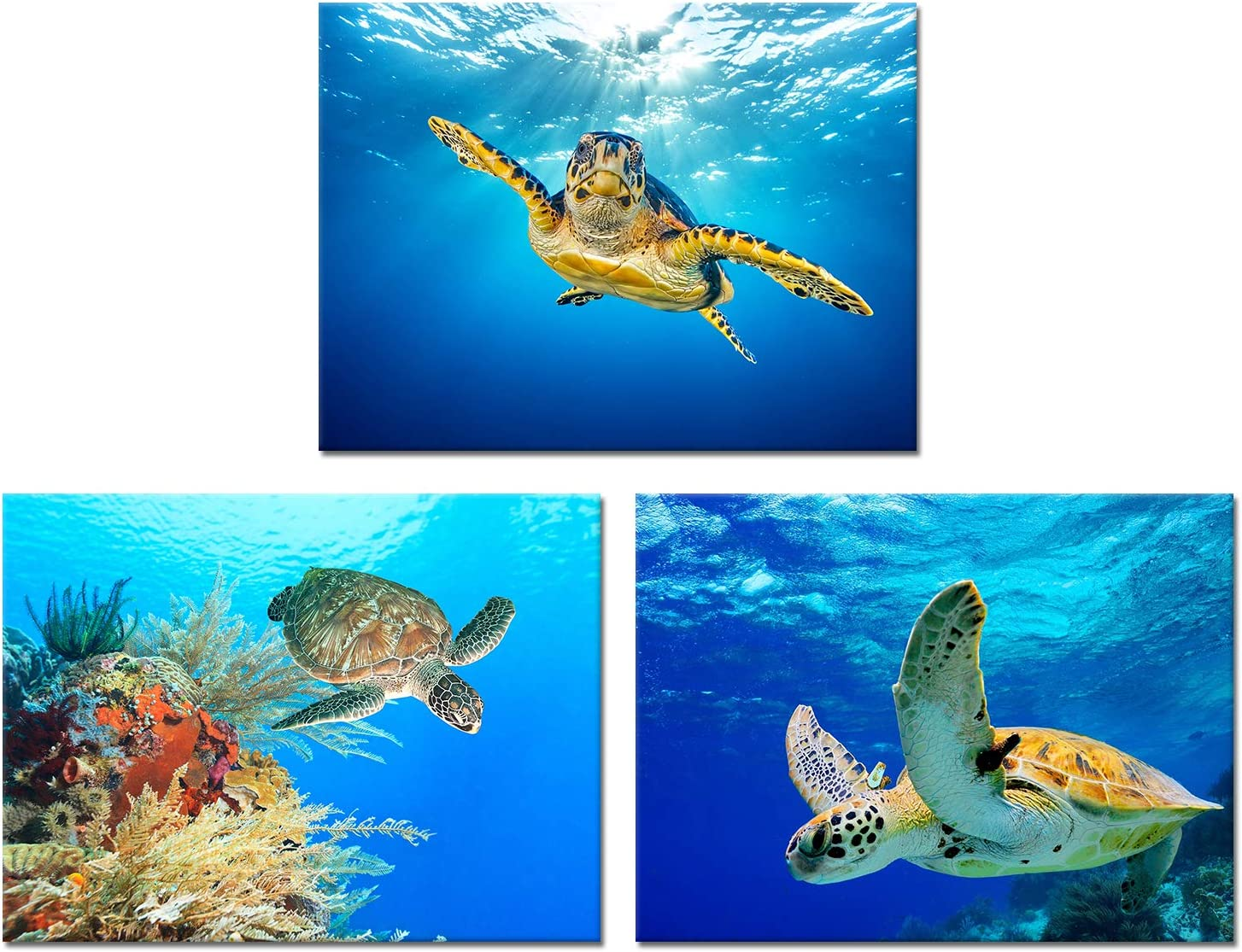Visual Art Decor Turtles Picture Canvas Prints Underwater World Sea Life Decoration Wall Artwork Gallery Wrapped Ready to Hang for Coastal Sea Theme Room