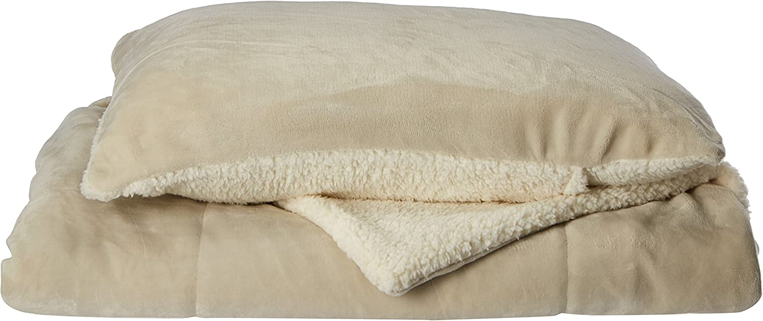 Chic Home Evie 2 Piece Blanket Set Soft Sherpa Lined Microplush Faux Mink with Sham, Twin XL Beige