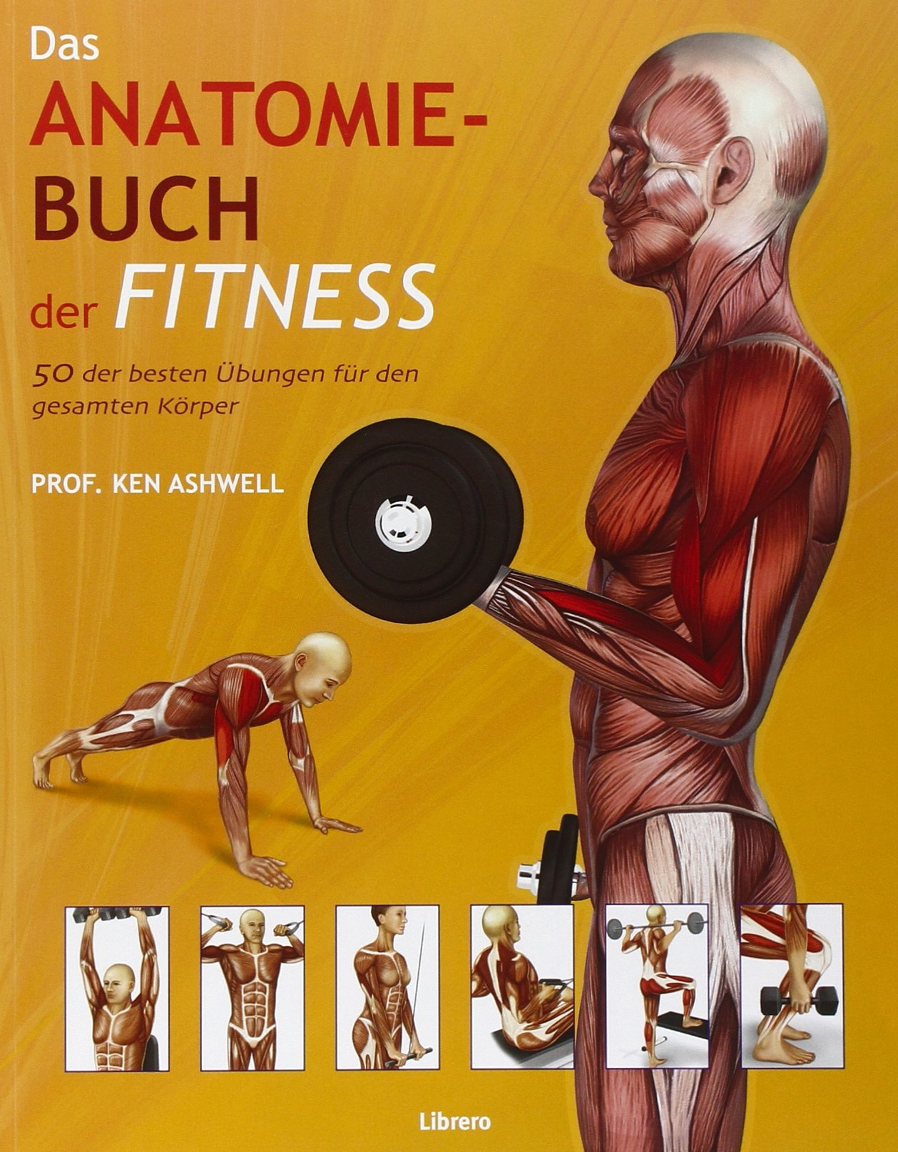 Das Anatomie-Buch der Fitness: Dieser für Praxis und Theorie ...