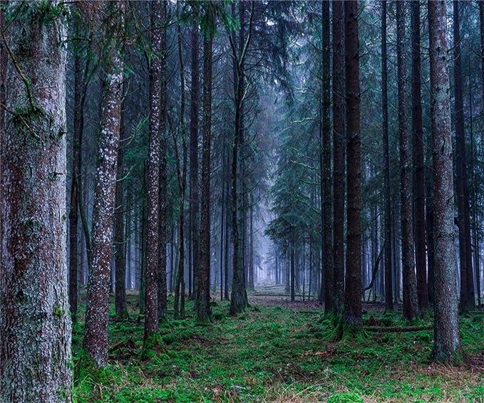AOFOTO 5x7ft Magic Forest Photography Studio Backdrop Fantastic Woods Background Dreamy Fairyland Path Child Kid Girl Artistic Portrait Beautiful Elfland Scenic Photo Shoot Props Digital Video Drape