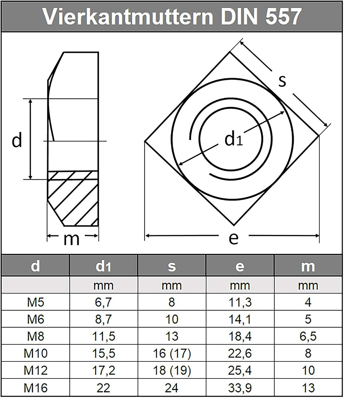 Vierkantmuttern M5 DIN 557 Edelstahl A2 5 St/ück Vierkant-Mutter Einlegmuttern