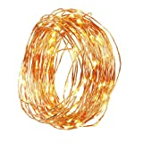 Amazon Price History for:Led String Starry Light Christmas Indoor Outdoor 100 Led 33ft Copper Wire Warm White