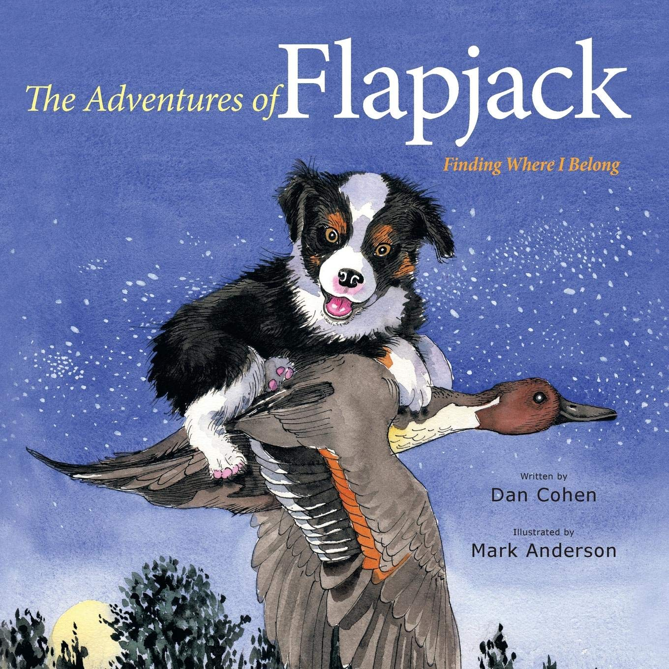 Download The Adventures of Flapjack: Finding Where I Belong pdf