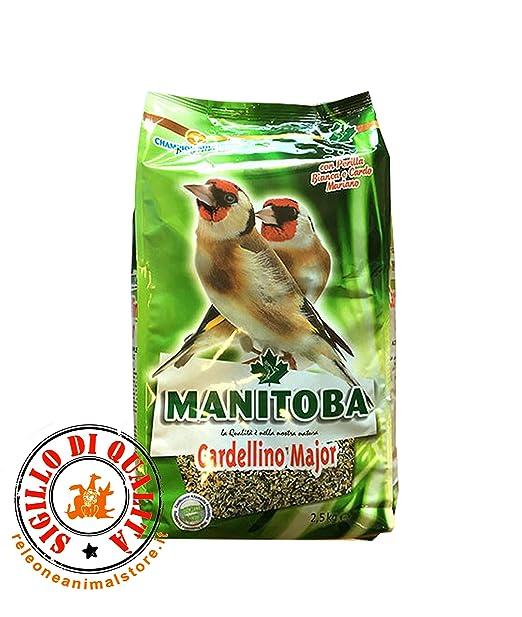 Manitoba Jilguero Major 2,5 kg Alimento completo para ...