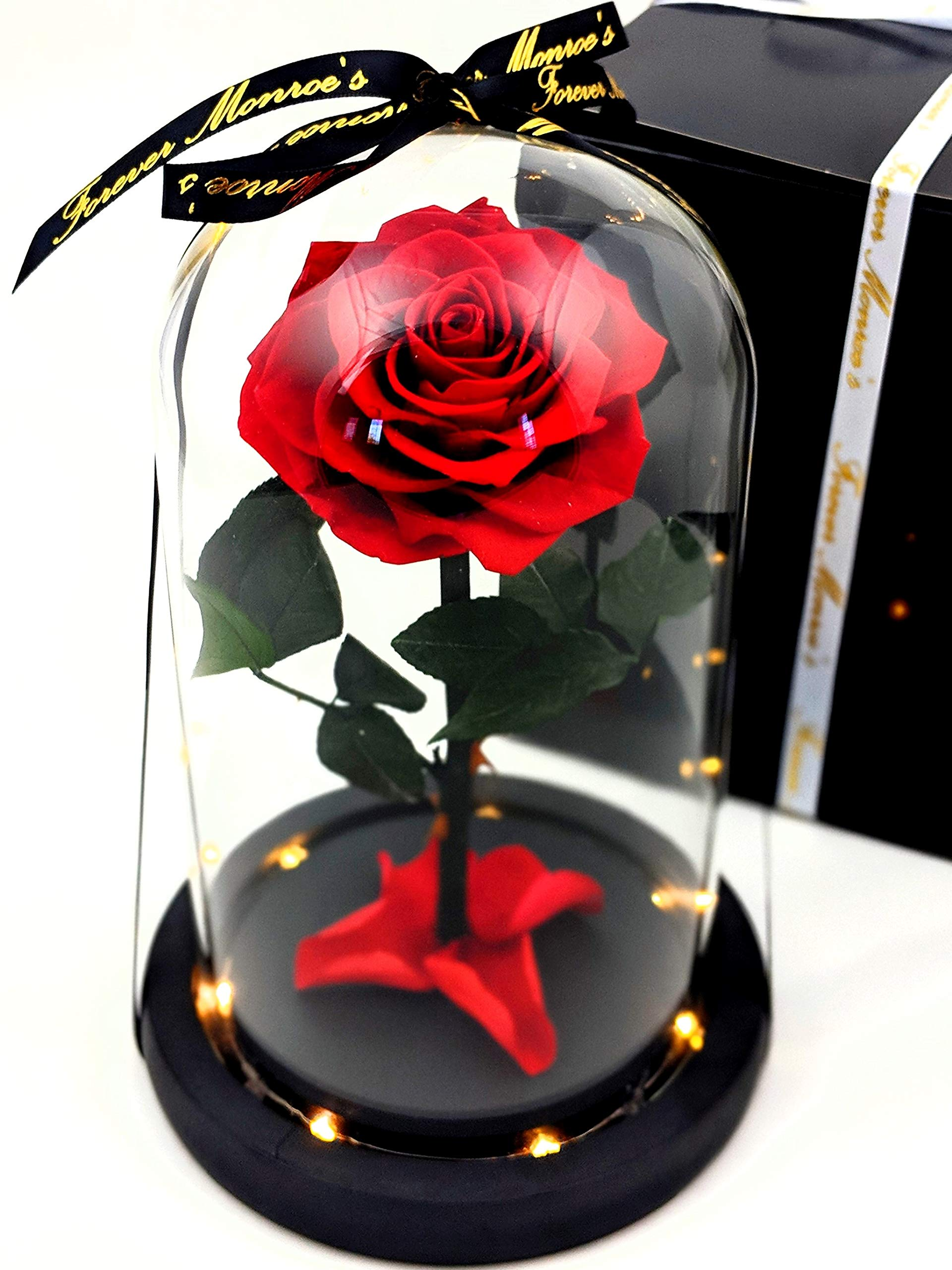 Forever Monroe's Enchanted Real Preserved Long Stem Red Rose in Large Glass Dome with LED twinkle lights inspired by Beauty and the Beast Movie