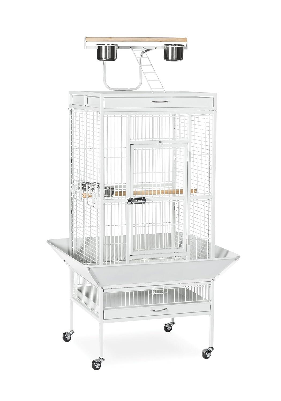 Chalk White 24'' x 20'' x 60'' Chalk White 24'' x 20'' x 60'' Prevue Hendryx 3152C Pet Products Wrought Iron Select Bird Cage, Chalk White