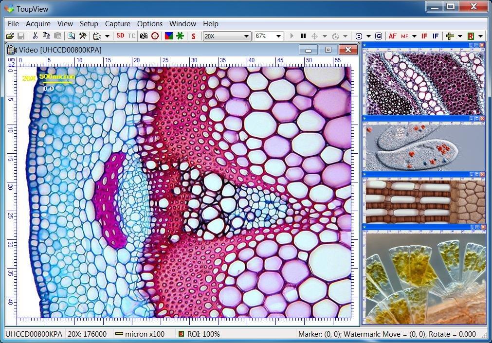 "Azzota USB3.0 14.0MP Microscope Camera - 1/3"" Color Aptina MT9F002(Progressive) CMOS + Software, Compatible with Windows XP/Vista/7/8 and Mac OS, Linux"