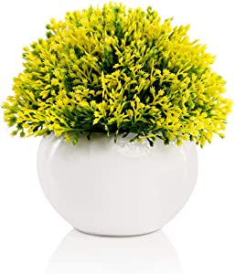 Mini Artificial Plant in White Ceramic Pot | Decorative Faux Plant for Home/Office Decor | Small Potted Topiary | Farmhouse Decor Accent | Desk/Kitchen/Bathroom/Shelf Fake Plant (Yellow & Green)