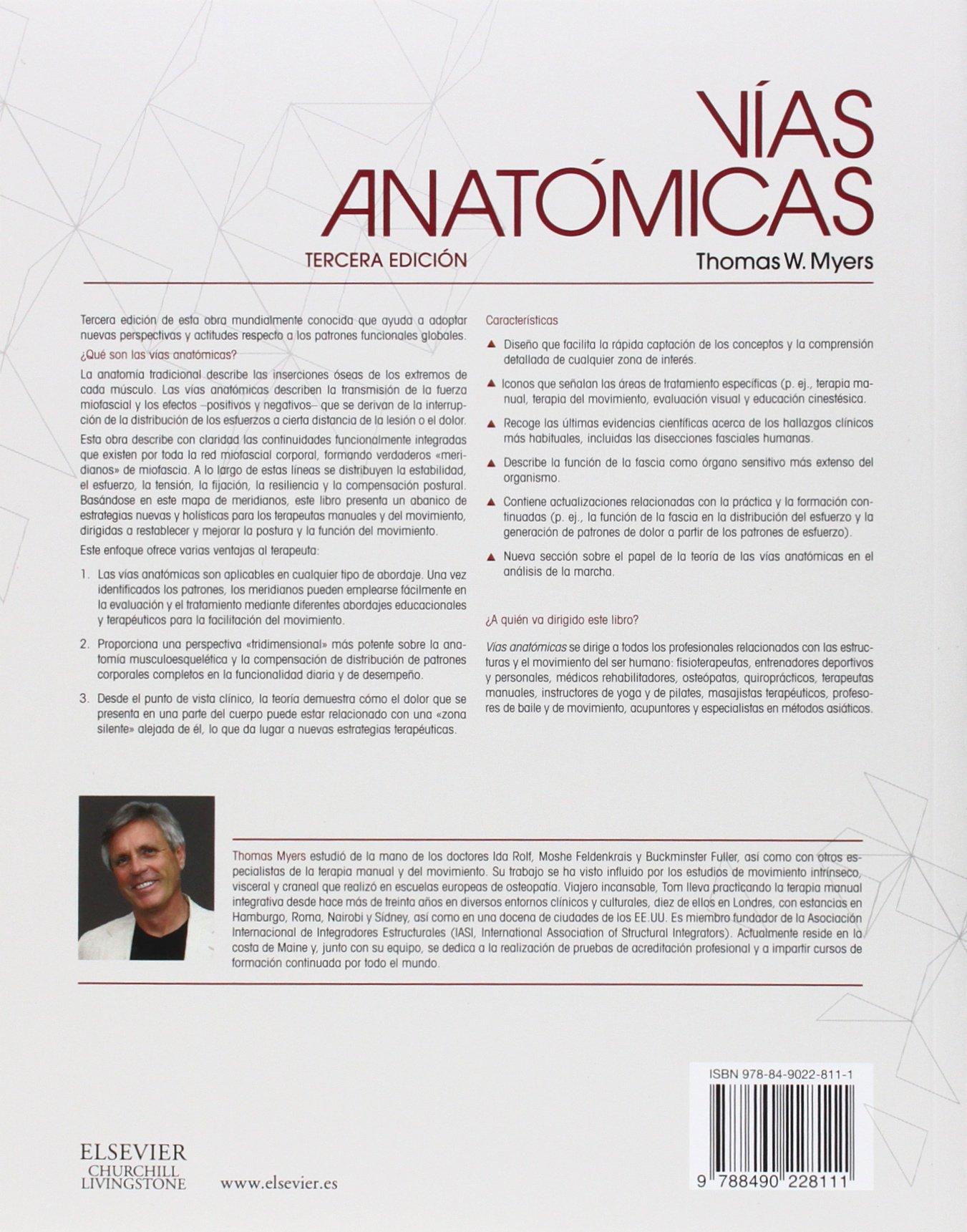 Vías Anatómicas. Meridianos Miofasciales Para Terapeutas Manuales Y ...