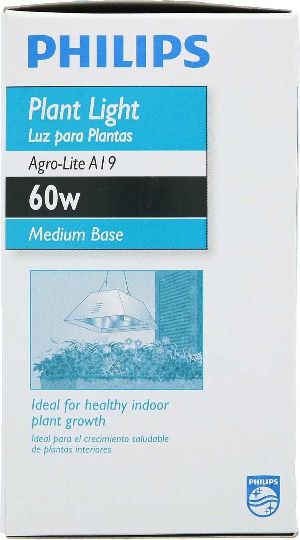 Phillips 429480 A19 60-Watt Medium Base Incandescent E26 120 Volt ...