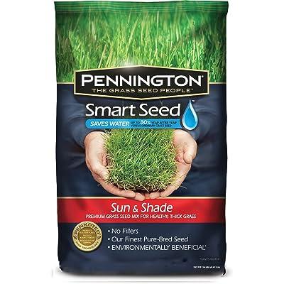Pennington Smart Seed Sun and Shade Mix : Grass Plants : Garden & Outdoor