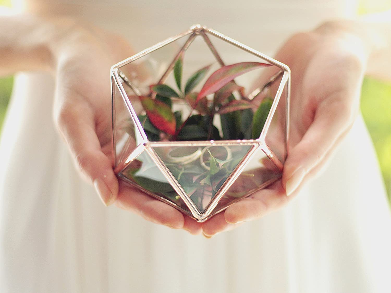 Amazoncom Mini Glass Geometric Terrarium Ring Box Ring Bearer Box
