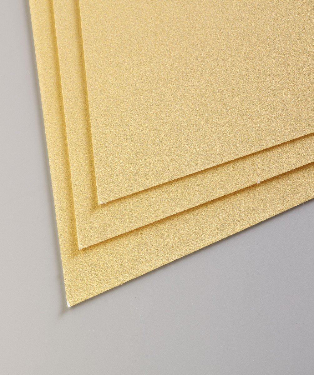 Clairefontaine 96011C Packung (mit 5 Zeichenbögen Pastelmat, 50 x 70 cm, 360 g, ideal für Trockentechniken und Pastell) braun B004HE77UG | Räumungsverkauf