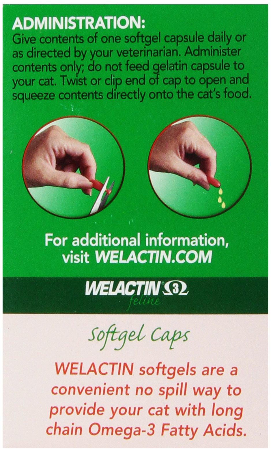 Nutramax Welactin Feline Soft Gel Caps - 60 Count 6