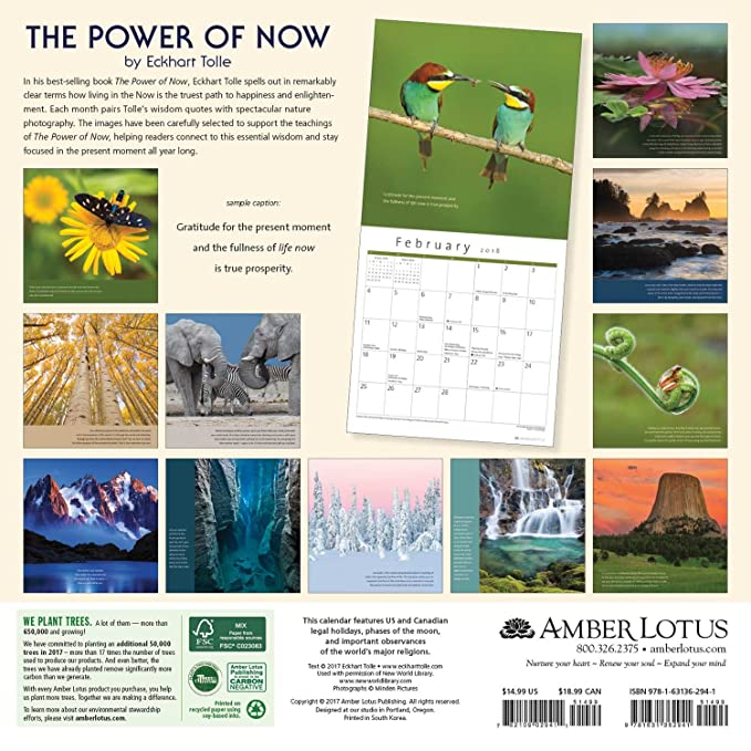 The Power of Now 2018 Wall Calendar: A Year of Inspirational Quotes ...