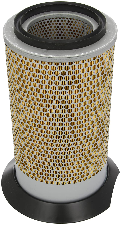 Mann-Filter filtro de aire c19377