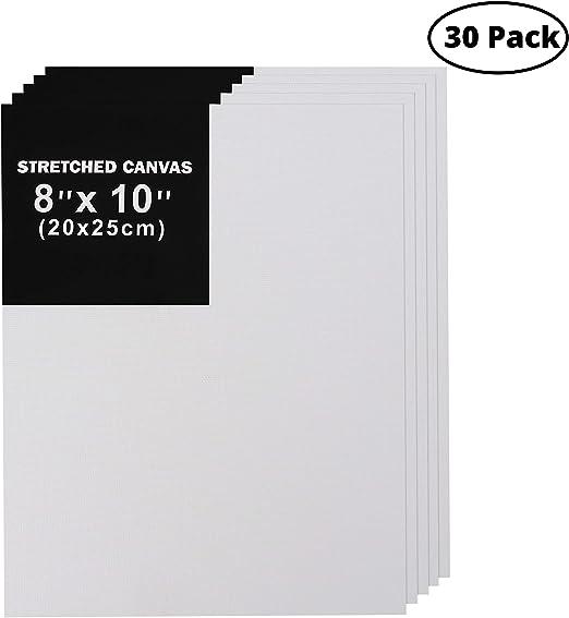 Belle Vous Paneles de Lienzo para Pintar (Pack de 30) - 20x25cm ...