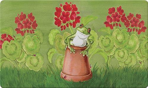 Toland Home Garden Potted Frog 18 x 30 Inch Decorative Floor Mat Red Flower Floral Gardening Doormat