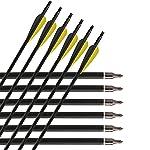 30'' Inch Carbon Arrow Fletched