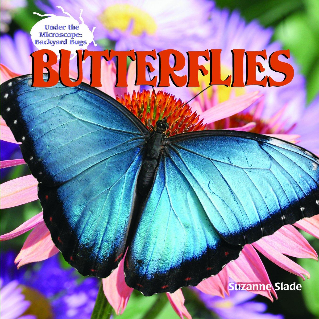 butterflies under the microscope backyard bugs suzanne slade