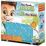 Buki - FS4206 - Mini Monde Des fourmis