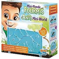 Buki France- Mini Mundo de Las Hormigas Hormiguero